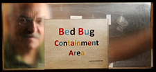 Schal raises 40 different strains of bed bugs in his lab.