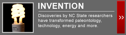 Discoveries by NC State researchers have transformed paleontology, technology, energy and more.