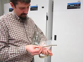 Steve Frank in his entomology lab.