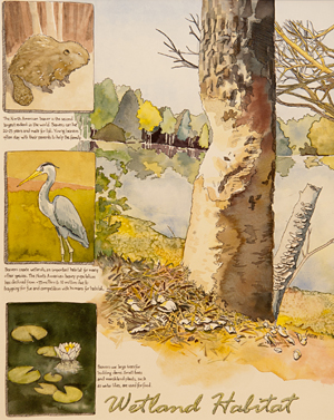 Drawing by Jennifer Landin shows birds and trees.