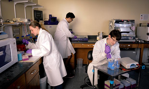 Undergraduates Taylor Courtney, Vishwas Rao and Matthew Draelos work in Gavin Williams' chemistry lab.