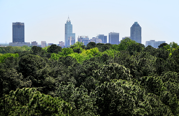 Raleigh's tree cover and skyline