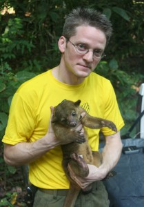 Roland Kays with the olinguito, a new mammal species.