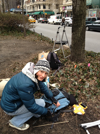 Elsa Youngsteadt, doing fieldwork in NYC. Photo: Lea Shell.