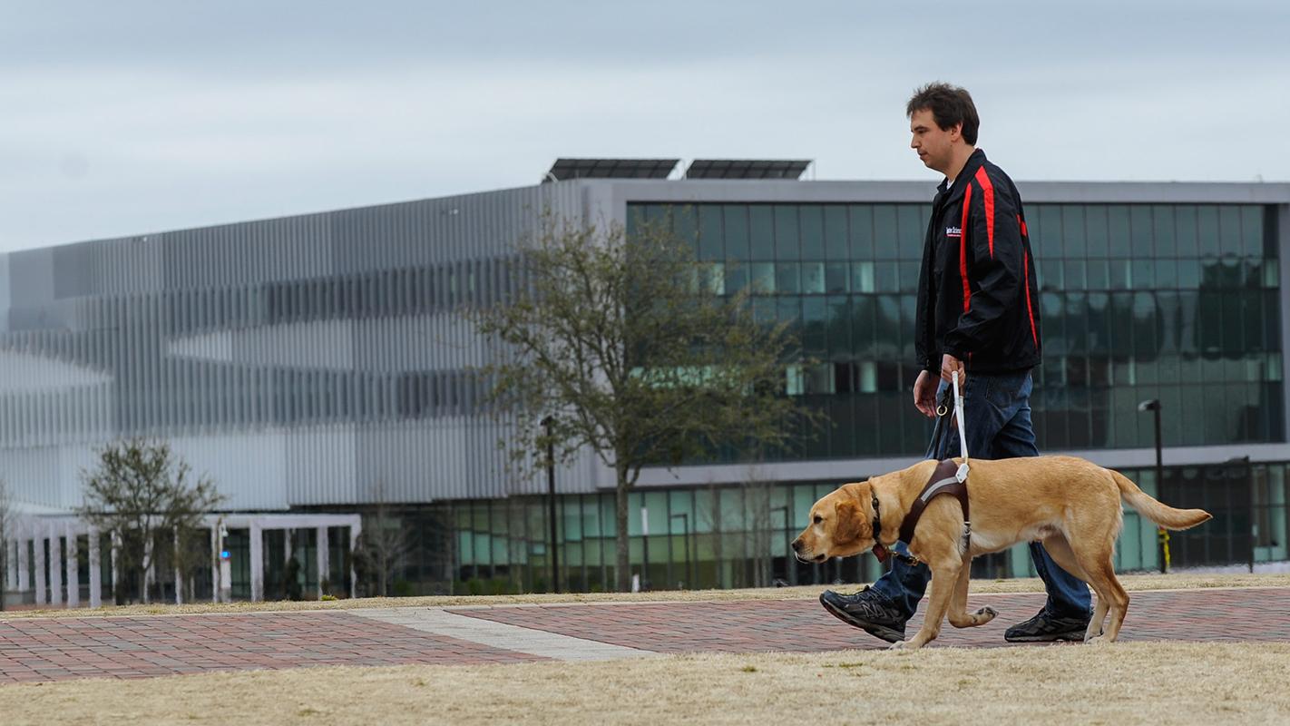 dog-handlger-training