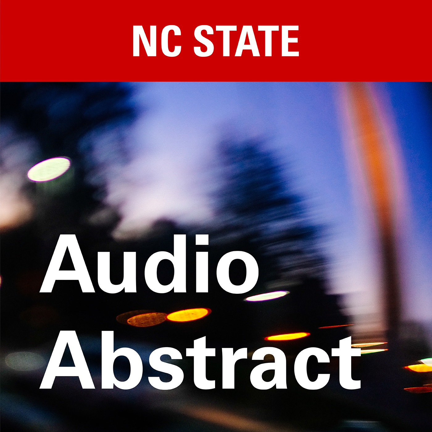 NCState's Audio Abstract