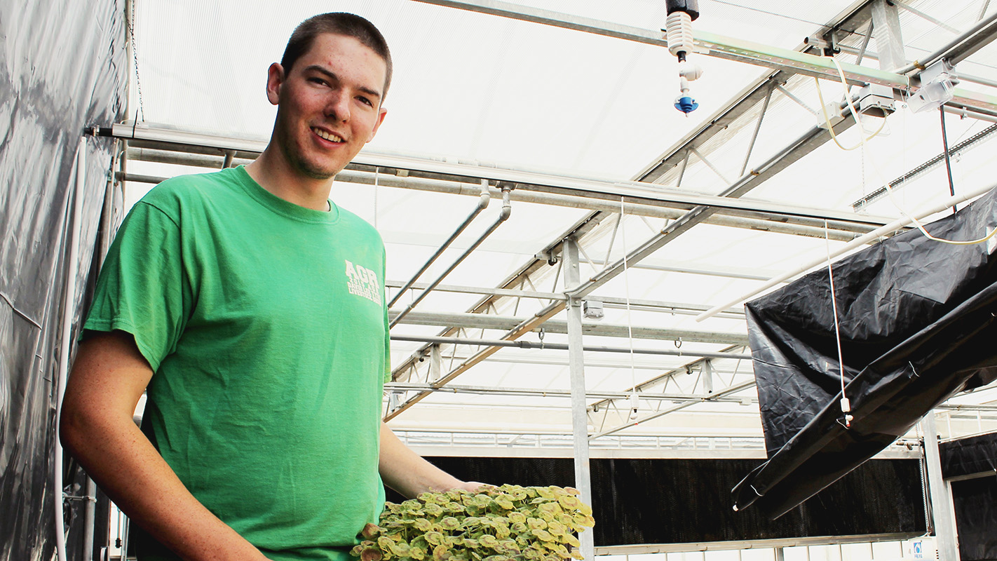 CALS graduate Austin Wrenn holds plants in a greenhouse on NC State's campus.