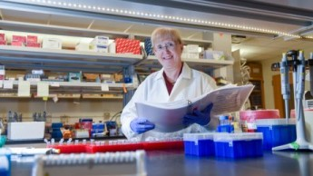 NC State genetics researcher Trudy Mackay in her lab.