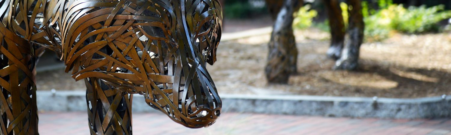 A close-up of of one of the woven wolves at Wolf Plaza on NC State's campus.