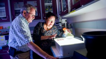 Drs. Dennis Brown and Raquel Hernandez of the Department of Molecular and Structural Biochemistry.