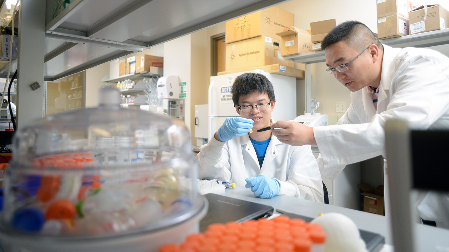 Zhen Gu and student work in his lab