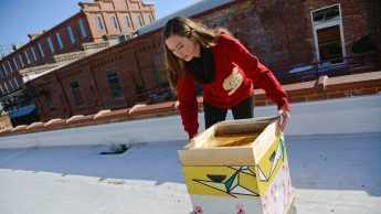 An NC State alumna works with bees on a Durham rooftop.