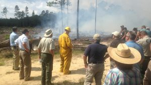 NC State assists the N.C. Forest Service with a prescribed burn.