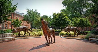 Panorama of wolf statues on a brick plaza at NC State.