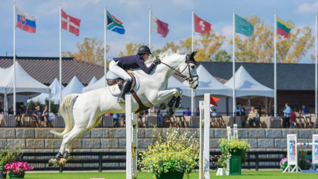 White horse jumping a hurdle in competition