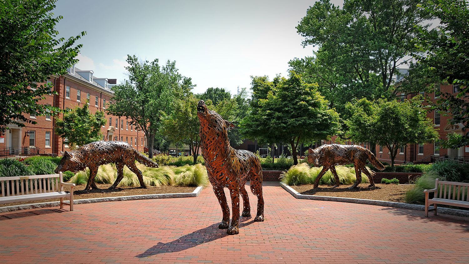 Copper wolf statues in Wolf Plaza at NC State