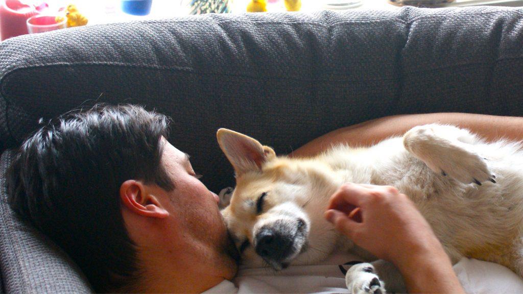 Dog cuddling with man.