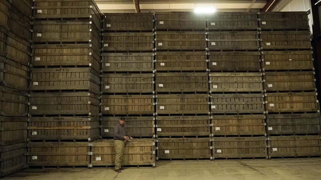 A warehouse with crates of sweet potatoes stacked floor to ceiling.