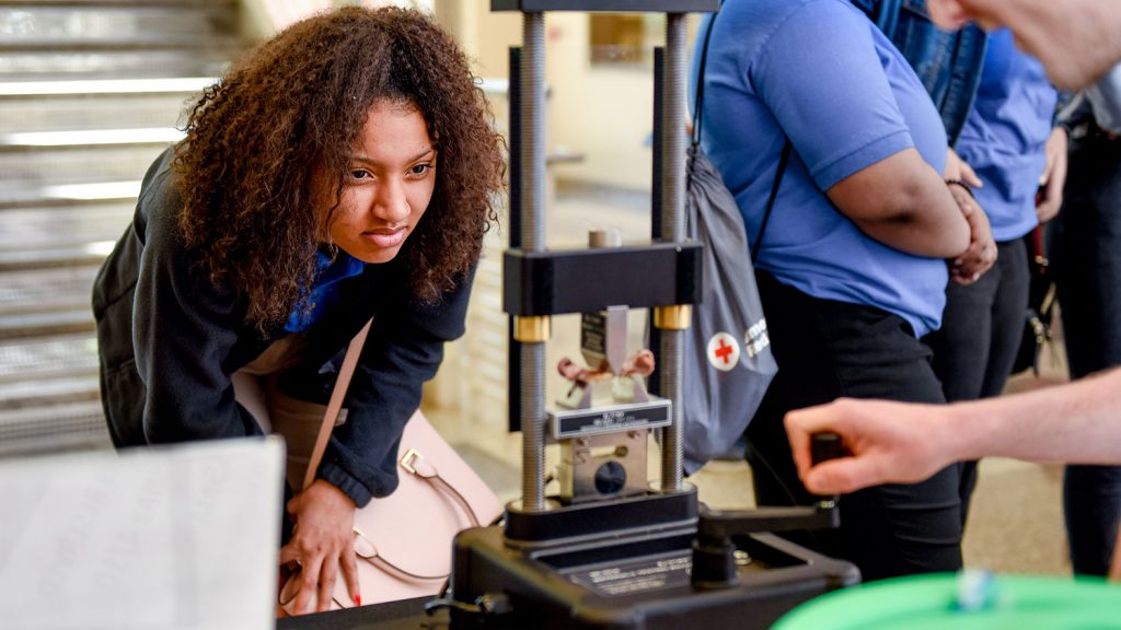 A student watches as a chicken bone reaches failure and breaks on a hand-crank three-point bending system.