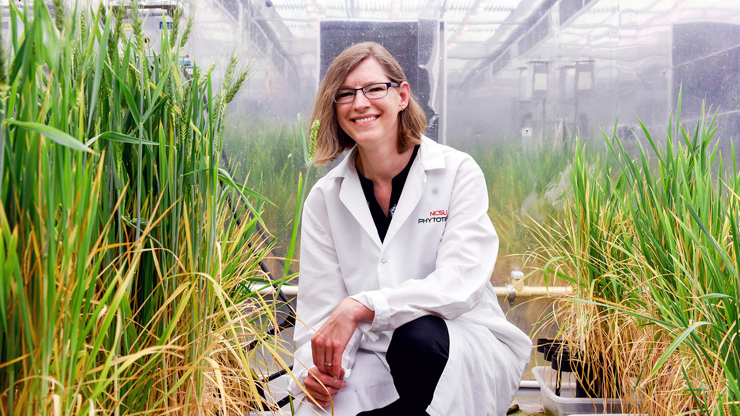 Photo of Amy Grunden in NC State's Phytotron.