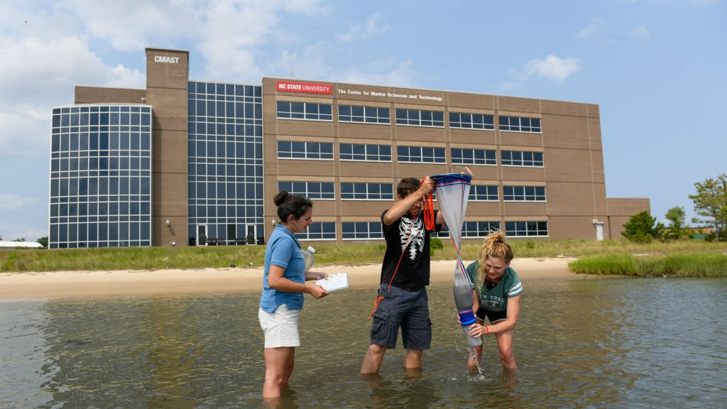 Students gather samples in the sound in front of the CMAST building