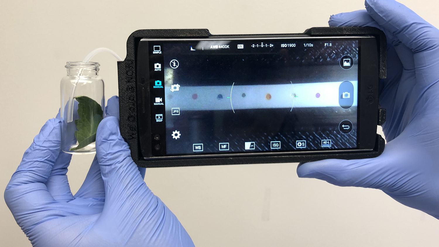 hands hold smartphone and sampling container for plant disease detection tech