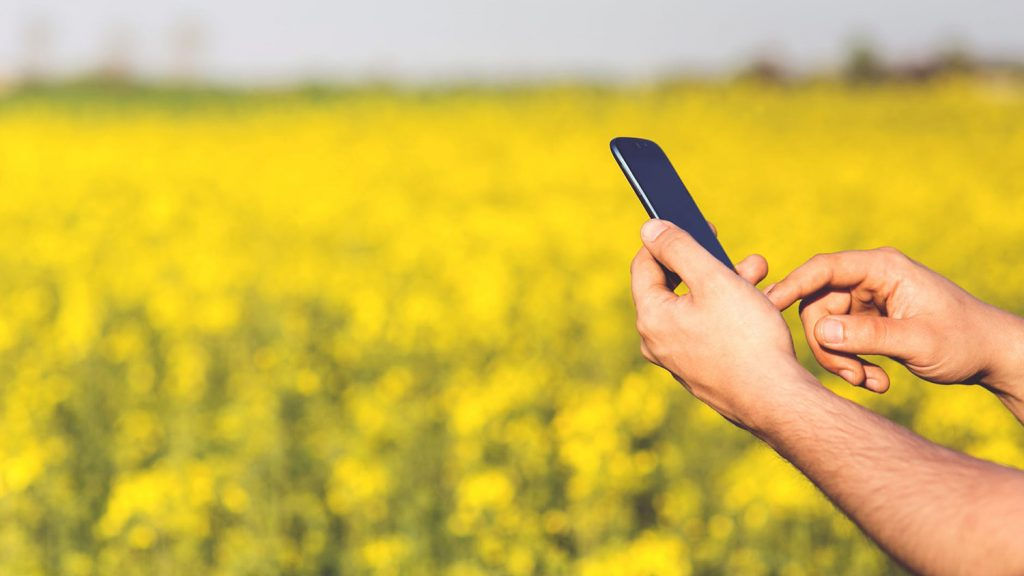 smartphone in front of a field