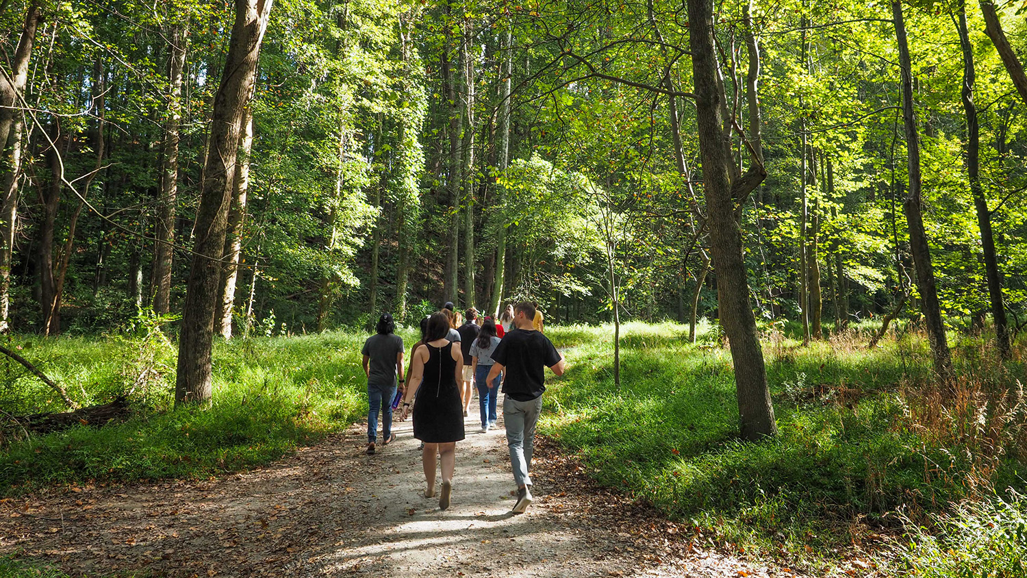 Students walk through the forest at the NC Art Museum park