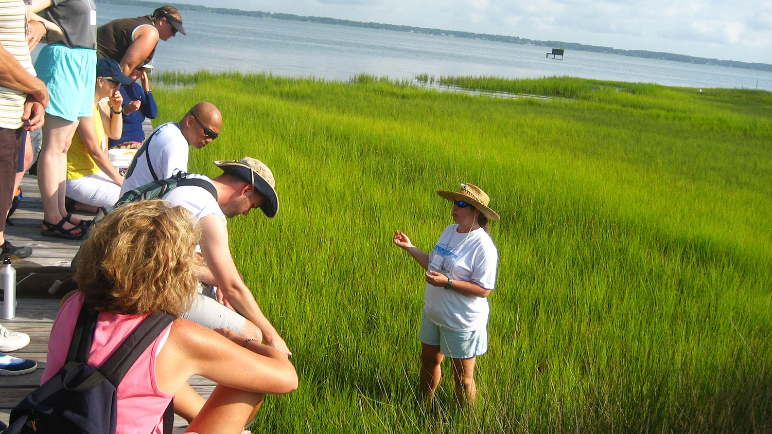Woman standing in marsh giving instruction to people on a dock above