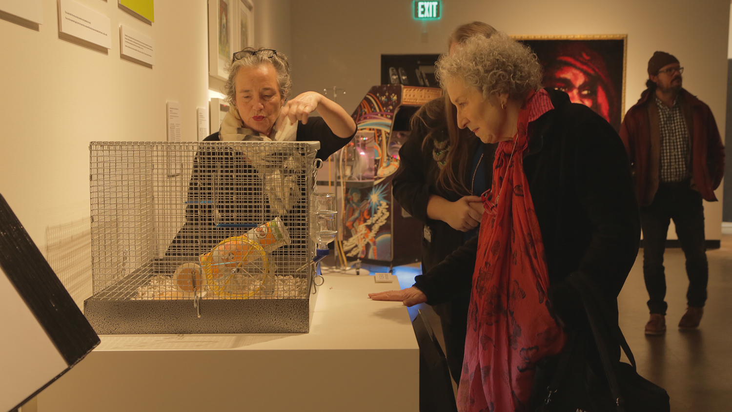 Atwood looks at an exhibit work at the Gregg Museum.