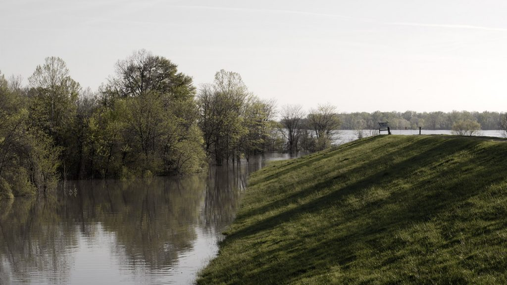 flood waters rise up the side of a levee