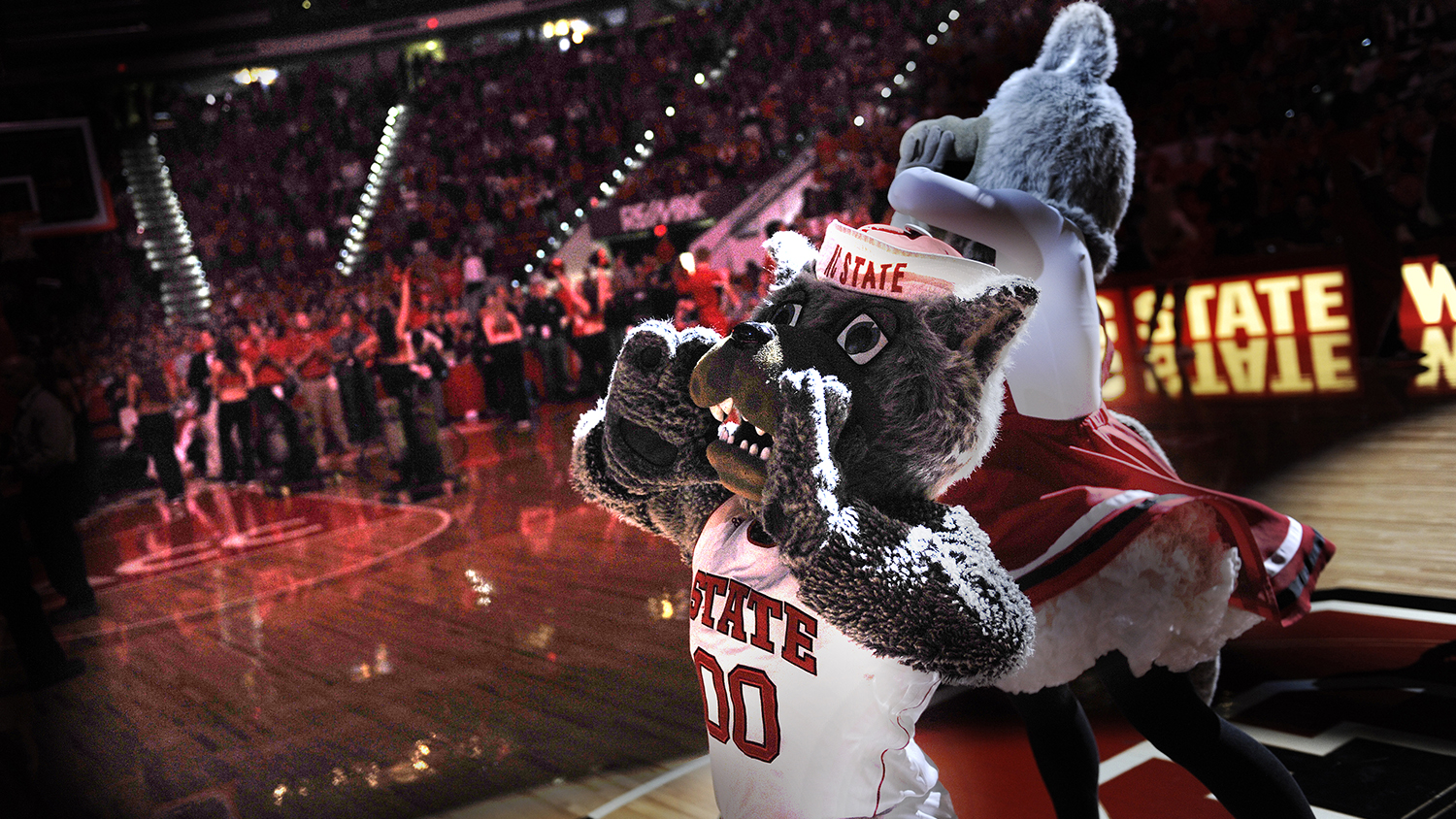 Mr. and Ms. Wuf cheer at a a basketball game.