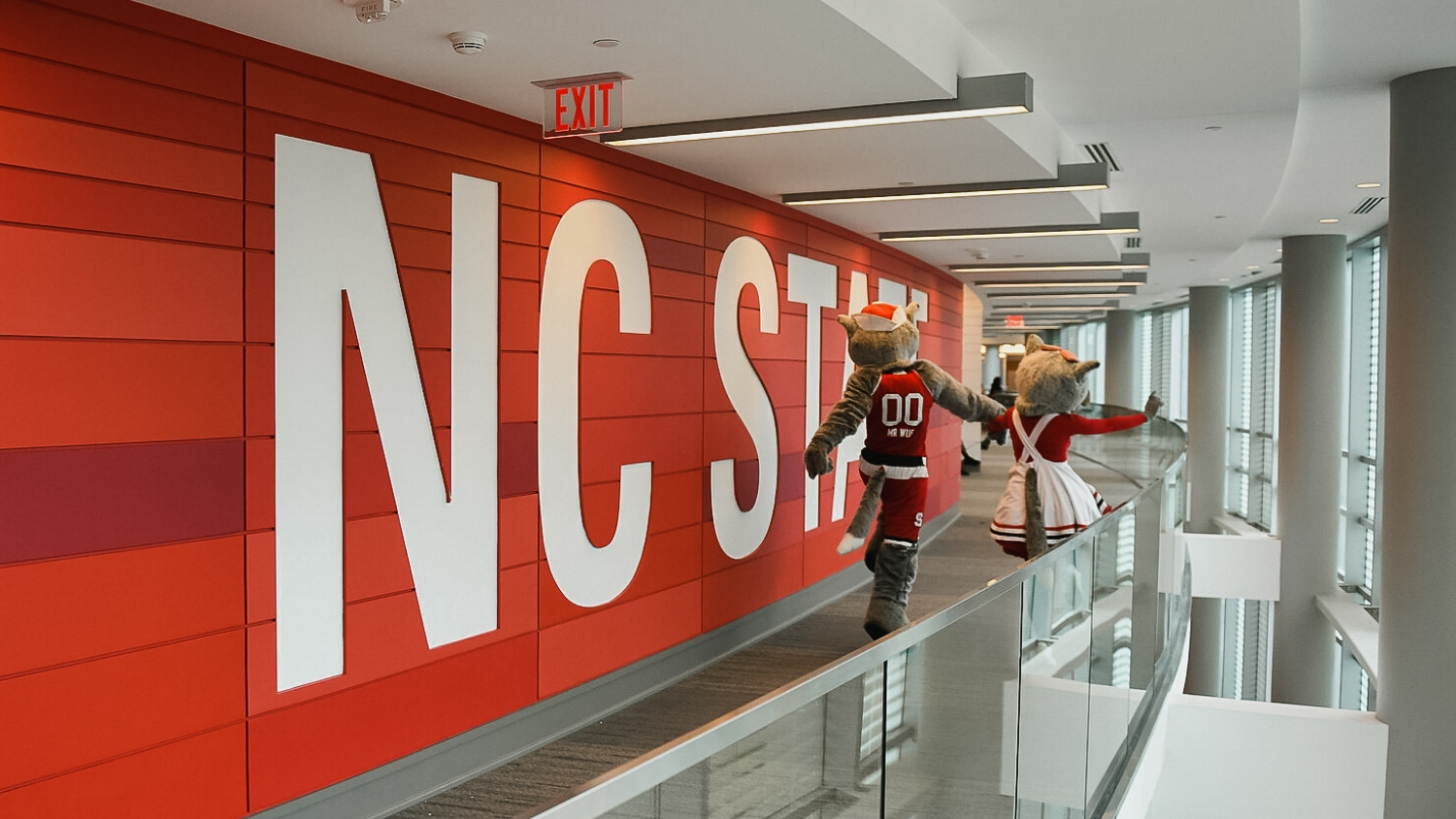 Mr. Wuf and Ms. Wuf take a walk by the red NC State wall in Talley Student Union.