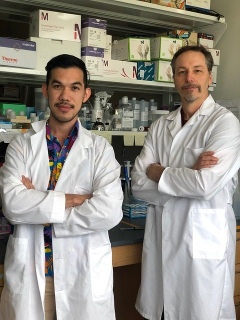 Thom LaBean and postdoc Abhichart Krissanaprasit stand in their lab wearing white lab coats.