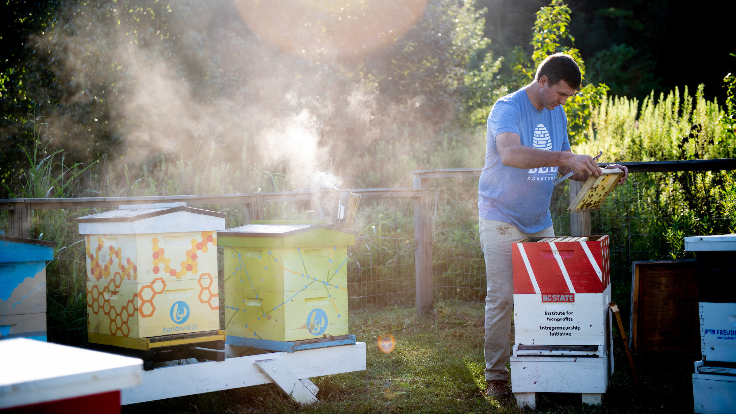 Bandwidth sponsors Bee Downtown's community apiary on Centennial Campus, home to 15,000 honey bees.
