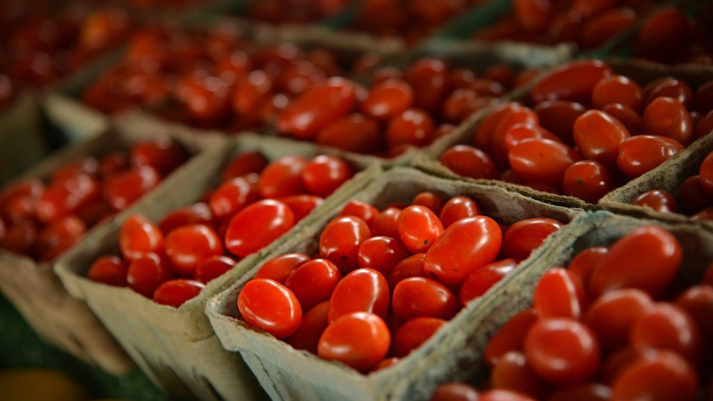 Cherry tomatoes for sale at the North Carolina State Farmer's Market in the Fall.