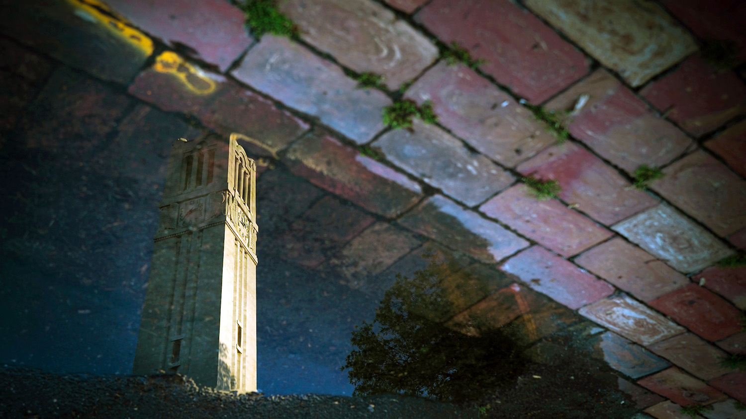 The NC State Belltower is reflected in a rain puddle after spring rains.