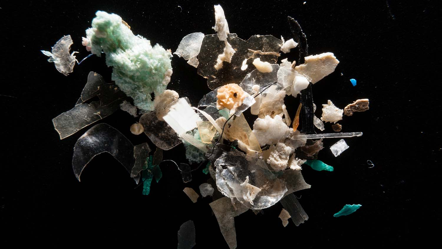 collection of microplastic trash
