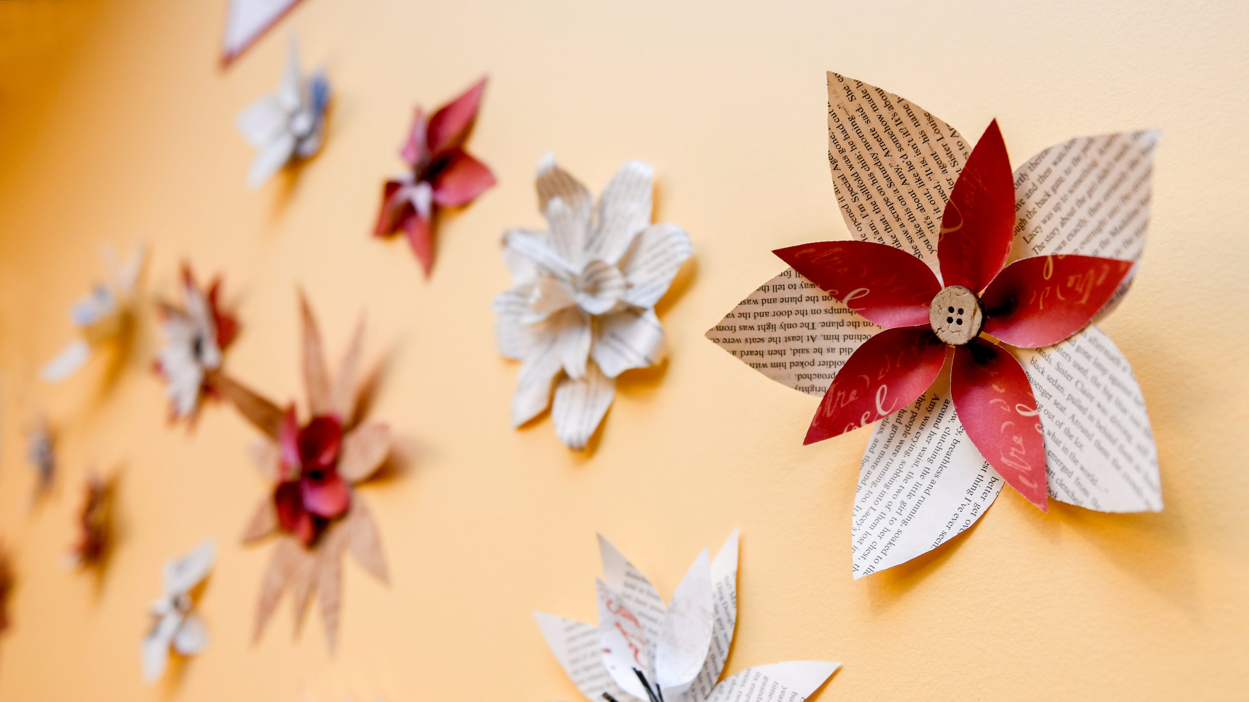 Paper flowers on a wall in the Women's Center.
