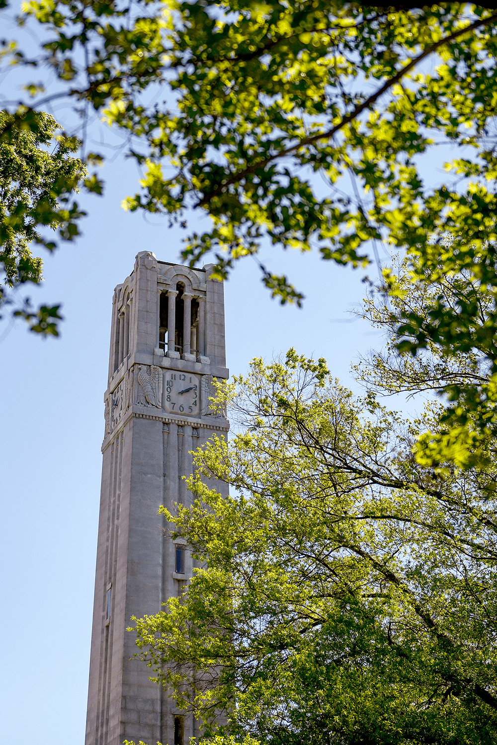 The Belltower on NC State's campus surrounded by trees on a sunny day.