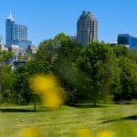 A view of the Raleigh skyline from Dorothea Dix Park.
