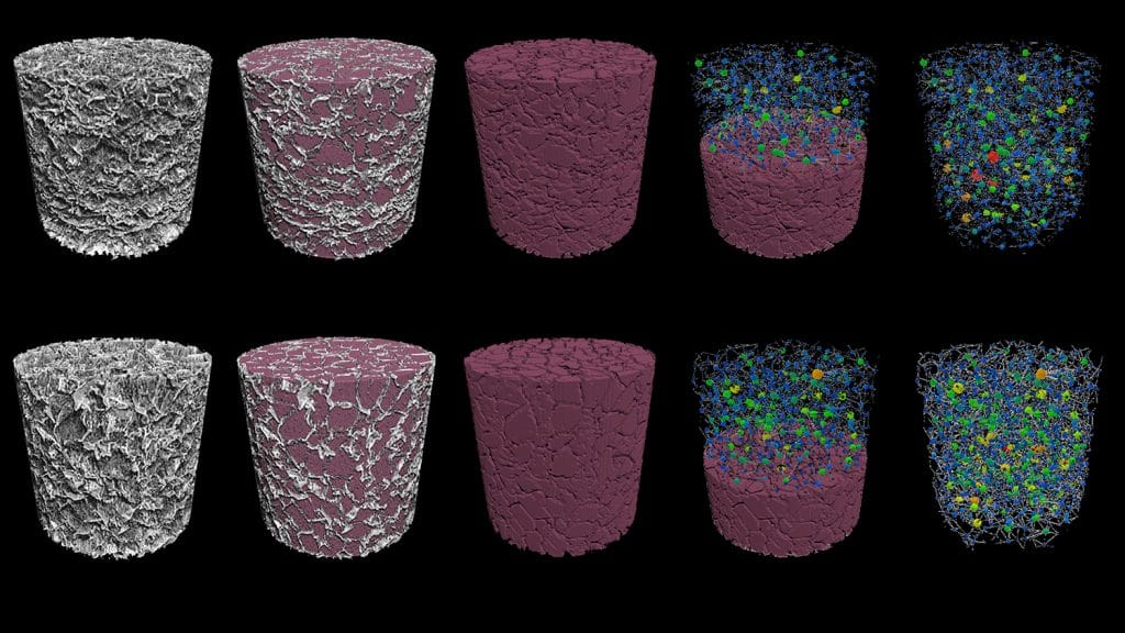 Digital renderings of the Brudno lab's CAR-T cell scaffolds.