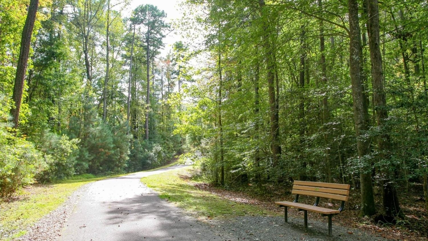 A park in Raleigh, North Carolina.
